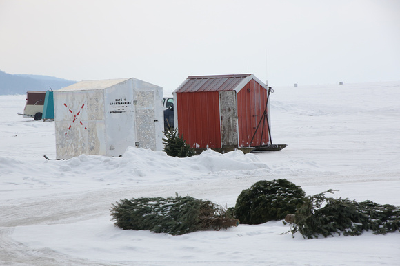 PAD Feb 15 Christmas Trees near the Ice Shanties